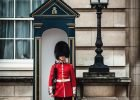 Guard of the Buckingham Palace in London
